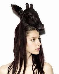 CRAZY HAIR2